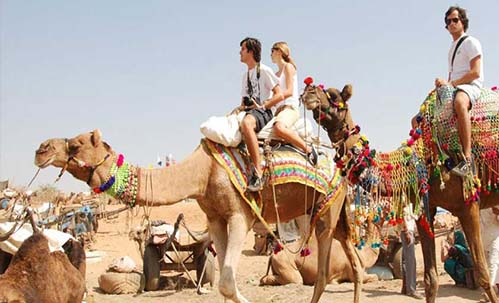 IEFF Jaipur Tour: Camel Ride