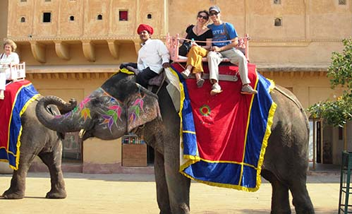 IEFF Jaipur Tour:Elephant Ride
